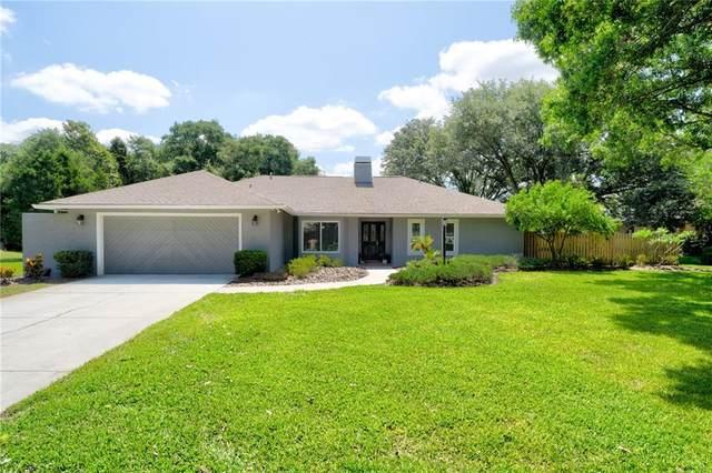 15311 Spruson Street, Odessa, FL 33556 (MLS #T3243612) :: Team Bohannon Keller Williams, Tampa Properties