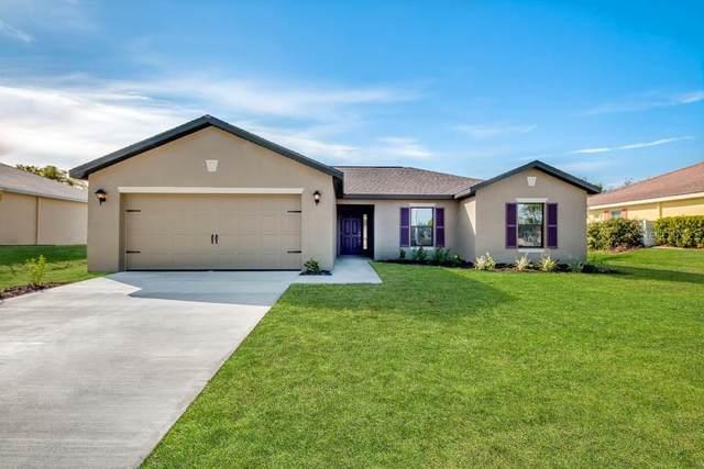 307 Elderberry Court, Poinciana, FL 34759 (MLS #T3243640) :: Team Bohannon Keller Williams, Tampa Properties