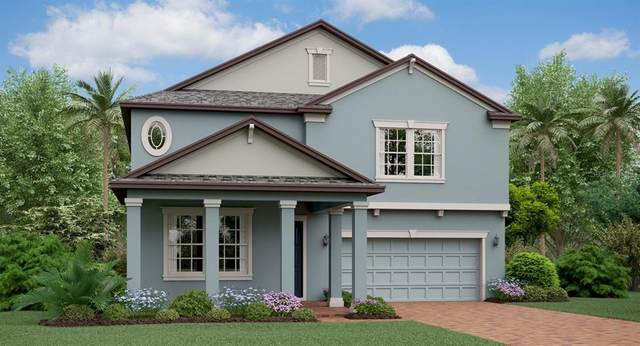 25077 Lambrusco Loop, Lutz, FL 33559 (MLS #T3243661) :: Team Borham at Keller Williams Realty