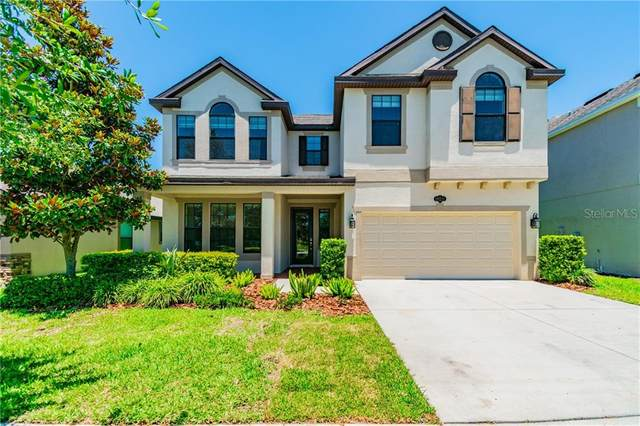 19211 Verdant Pasture Way, Tampa, FL 33647 (MLS #T3243673) :: Bustamante Real Estate