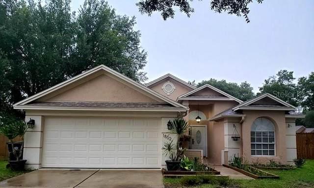 1802 Rudder Drive, Valrico, FL 33594 (MLS #T3243681) :: Team Pepka