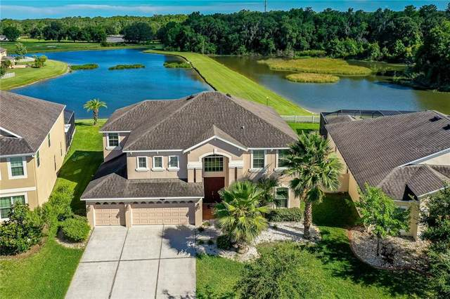 20011 Bears Track Lane, Tampa, FL 33647 (MLS #T3243697) :: Bustamante Real Estate