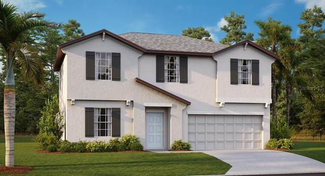 11909 Wild Daffodil Court, Riverview, FL 33579 (MLS #T3243714) :: Griffin Group