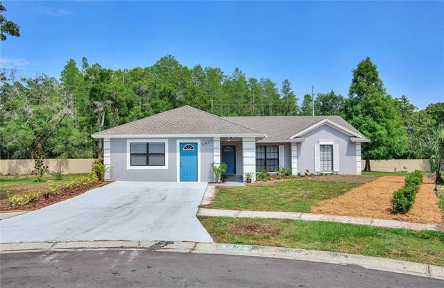 6402 Crystal Brook Drive, Tampa, FL 33625 (MLS #T3243730) :: Heart & Home Group