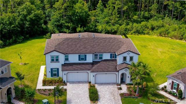 4111 Barletta Court, Wesley Chapel, FL 33543 (MLS #T3243749) :: Mark and Joni Coulter | Better Homes and Gardens