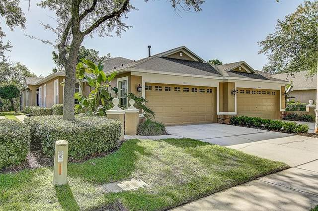 19117 Lake Audubon Drive, Tampa, FL 33647 (MLS #T3243865) :: Cartwright Realty