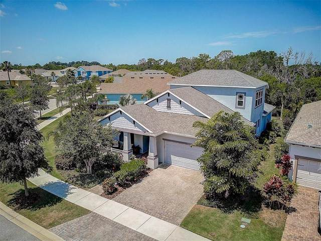 5126 Coastal Scene Drive, Apollo Beach, FL 33572 (MLS #T3243867) :: Bustamante Real Estate