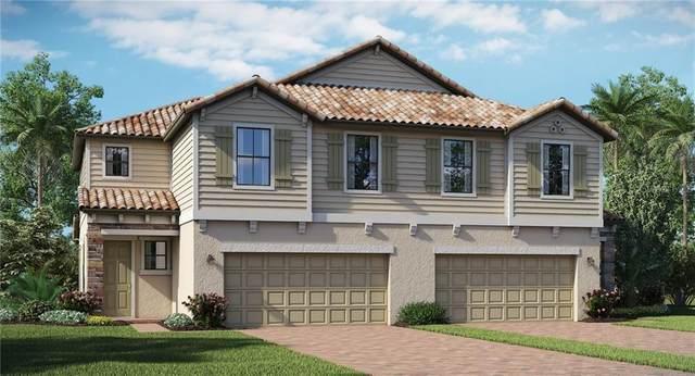11807 Bluebird Place, Bradenton, FL 34211 (MLS #T3243875) :: Medway Realty