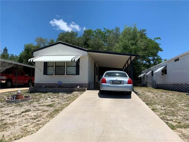 12114 Longhorn Drive, Hudson, FL 34667 (MLS #T3243877) :: Dalton Wade Real Estate Group