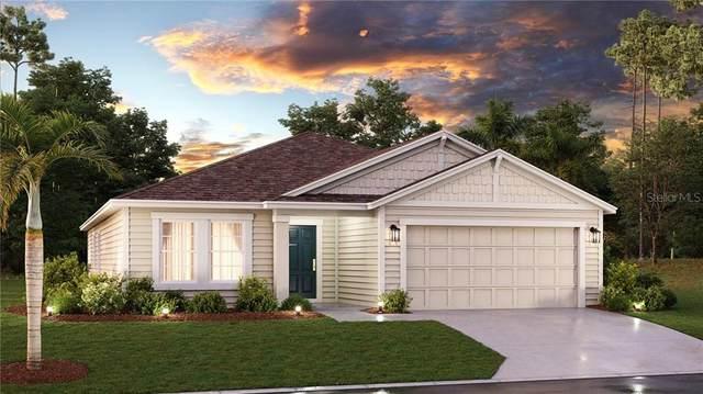4773 Magnetite Loop, Mount Dora, FL 32757 (MLS #T3243887) :: Premier Home Experts
