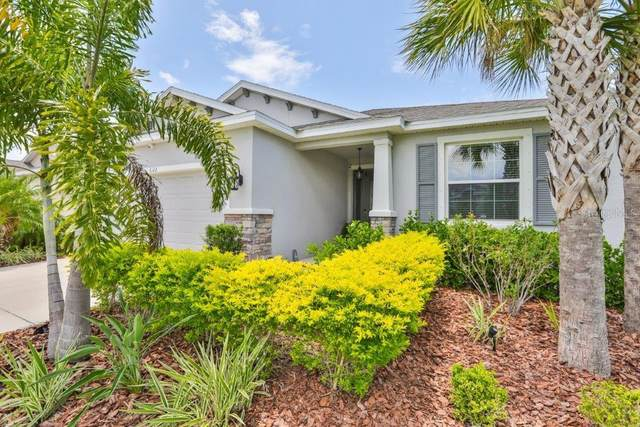 6312 Sunsail Place, Apollo Beach, FL 33572 (MLS #T3243889) :: Rabell Realty Group