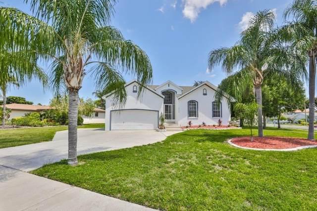 6508 Manila Palm Way, Apollo Beach, FL 33572 (MLS #T3243925) :: Your Florida House Team