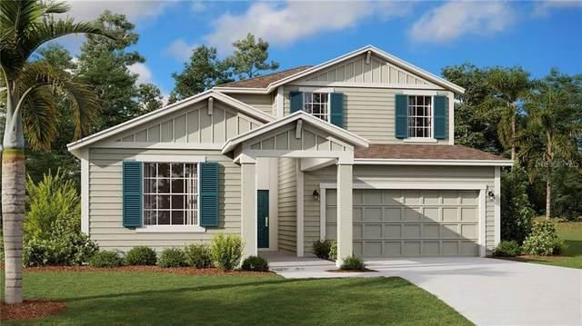 4780 Magnetite Loop, Mount Dora, FL 32757 (MLS #T3243934) :: Premier Home Experts