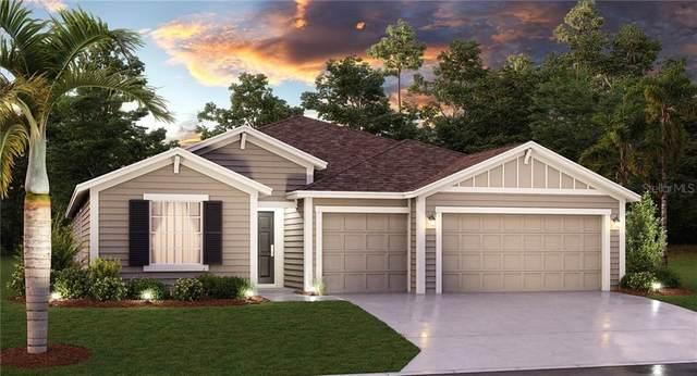 5747 Alenlon Way, Mount Dora, FL 32757 (MLS #T3243952) :: Premier Home Experts