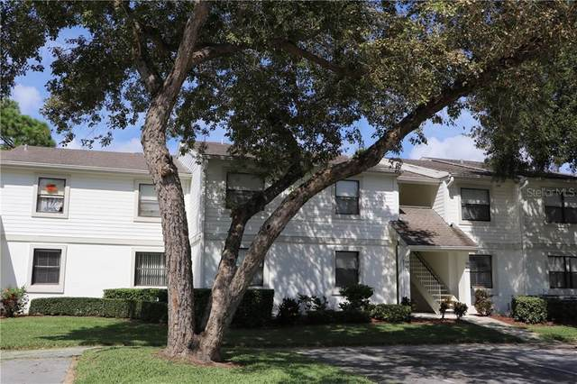 307 Windward Place #307, Oldsmar, FL 34677 (MLS #T3243989) :: Pristine Properties