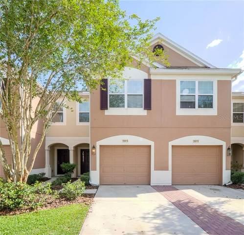 26618 Castleview Way, Wesley Chapel, FL 33544 (MLS #T3243997) :: Team Bohannon Keller Williams, Tampa Properties