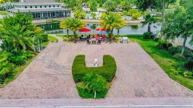 6914 & 6918 Amanda Vista Circle, Land O Lakes, FL 34637 (MLS #T3244007) :: Cartwright Realty