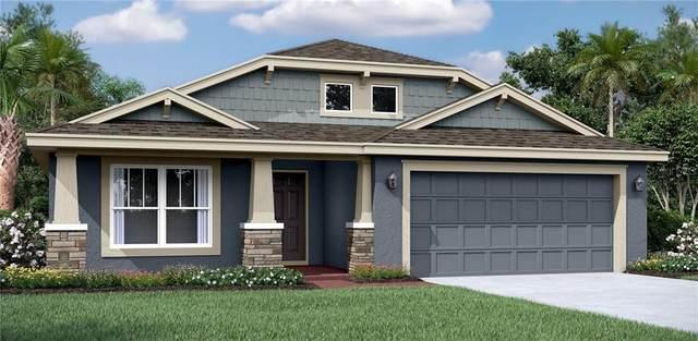 11727 Jackson Landing Place, Tampa, FL 33624 (MLS #T3244039) :: Burwell Real Estate