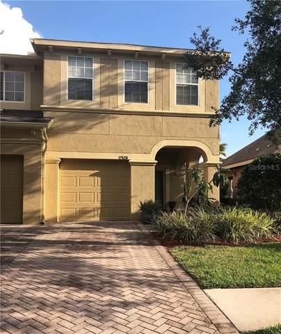 17528 Hugh Lane, Land O Lakes, FL 34638 (MLS #T3244077) :: Team Borham at Keller Williams Realty