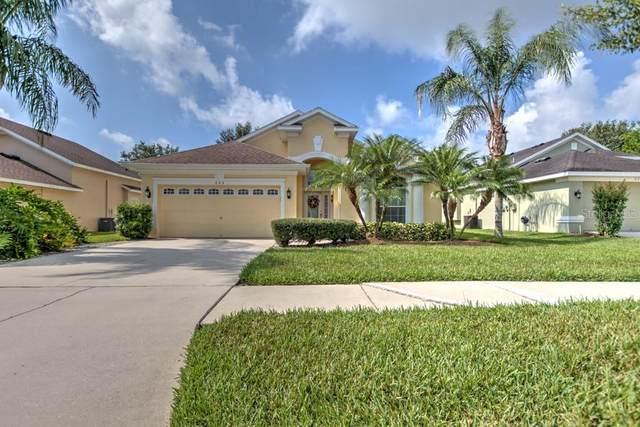 623 Chesney Drive, Valrico, FL 33594 (MLS #T3244079) :: Team Pepka