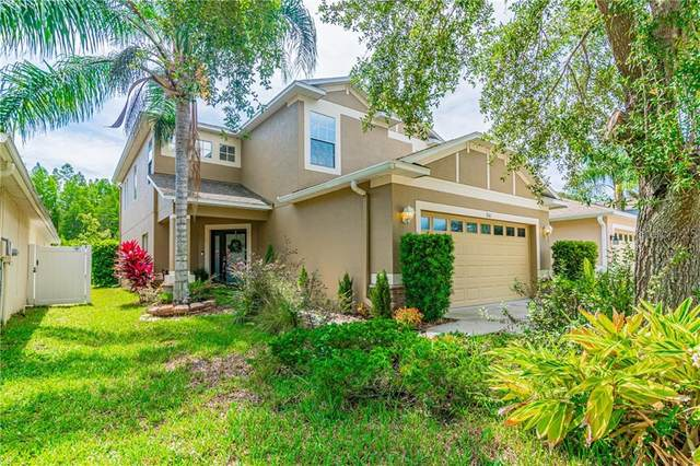 3141 Whitley Bay Court, Land O Lakes, FL 34638 (MLS #T3244082) :: Griffin Group