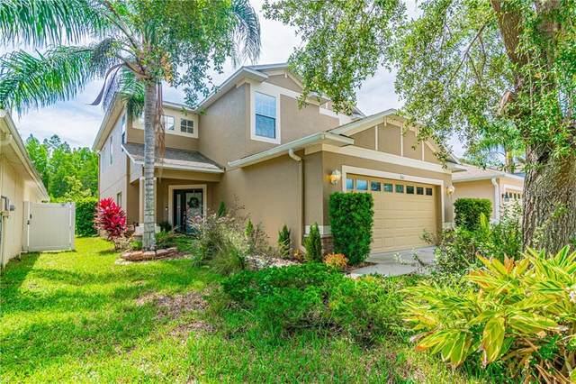 3141 Whitley Bay Court, Land O Lakes, FL 34638 (MLS #T3244082) :: Icon Premium Realty