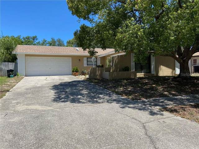 215 Earl Street, Tarpon Springs, FL 34689 (MLS #T3244095) :: Team Borham at Keller Williams Realty