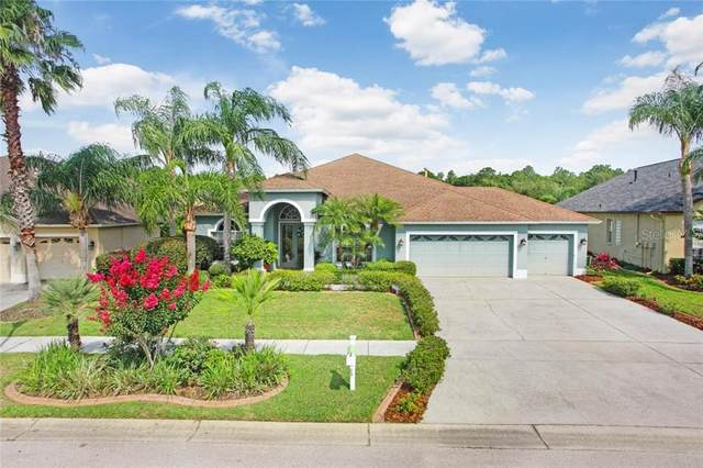 10119 Londonshire Lane, Tampa, FL 33647 (MLS #T3244103) :: The Paxton Group