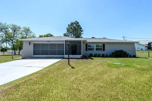 14491 Coronado Drive, Spring Hill, FL 34609 (MLS #T3244113) :: Mark and Joni Coulter | Better Homes and Gardens