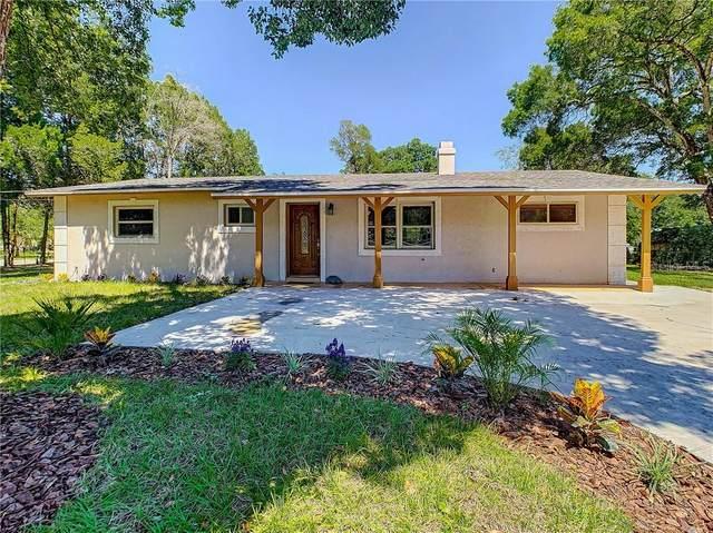 8218 Opal Lane, Zephyrhills, FL 33540 (MLS #T3244114) :: The Figueroa Team