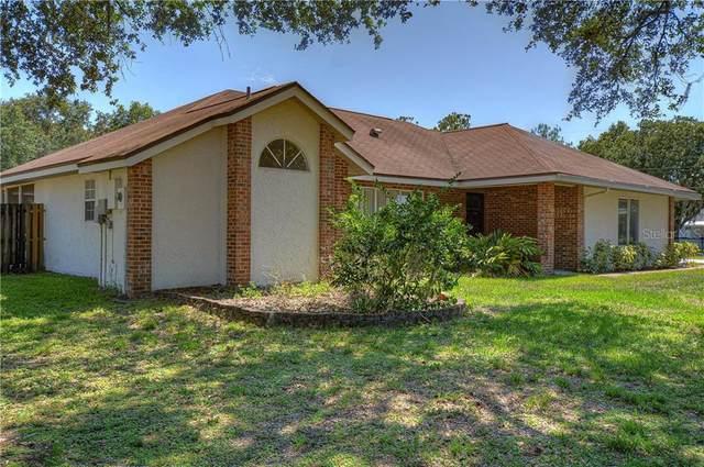 29236 Laughridge Place, Wesley Chapel, FL 33545 (MLS #T3244132) :: Griffin Group