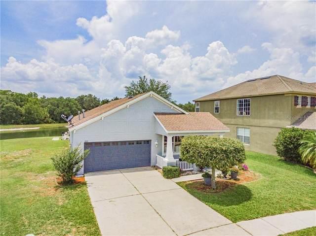 1027 Napolean Way, Wesley Chapel, FL 33544 (MLS #T3244139) :: Cartwright Realty