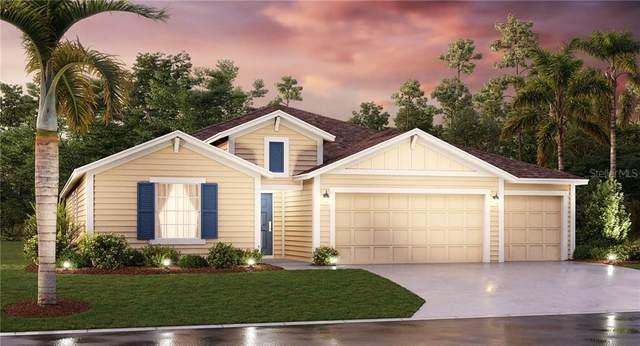 5759 Alenlon Way, Mount Dora, FL 32757 (MLS #T3244154) :: Premier Home Experts