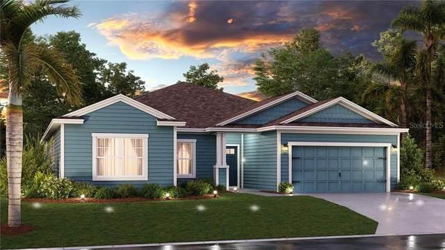 5770 Alenlon Way, Mount Dora, FL 32757 (MLS #T3244157) :: Premier Home Experts