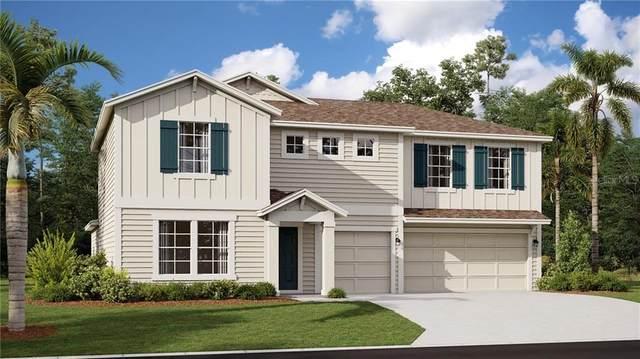 5776 Alenlon Way, Mount Dora, FL 32757 (MLS #T3244164) :: Premier Home Experts
