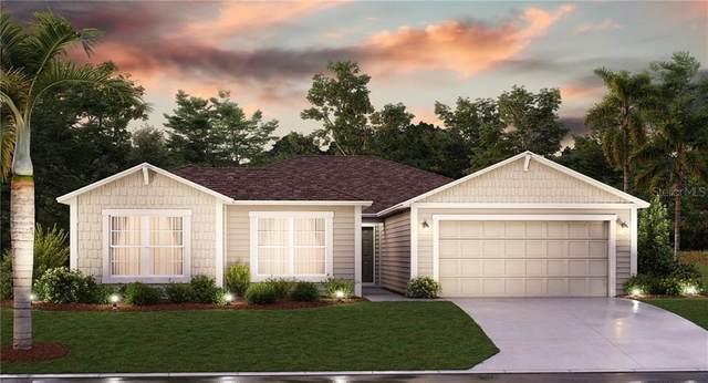 5777 Alenlon Way, Mount Dora, FL 32757 (MLS #T3244170) :: Premier Home Experts