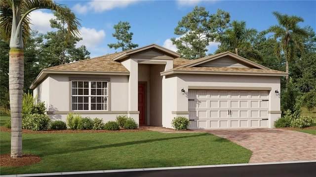 1954 Mountain Pine Street, Ocoee, FL 34761 (MLS #T3244181) :: Team Bohannon Keller Williams, Tampa Properties