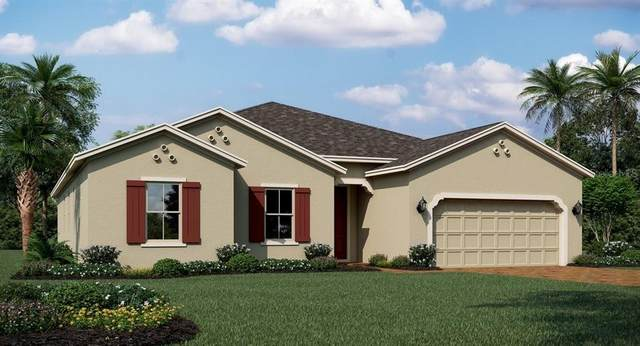 2004 American Beech Parkway, Ocoee, FL 34761 (MLS #T3244197) :: Team Bohannon Keller Williams, Tampa Properties