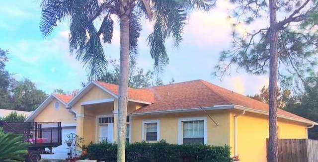 10334 Copperwood Drive, New Port Richey, FL 34654 (MLS #T3244206) :: The Brenda Wade Team