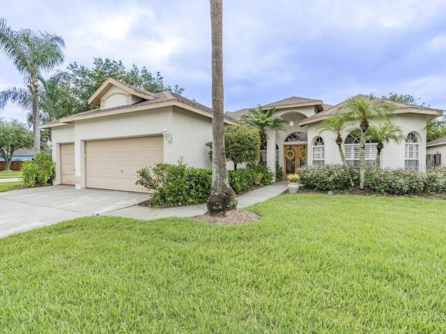 28729 Crooked Stick Court, Wesley Chapel, FL 33543 (MLS #T3244238) :: Baird Realty Group