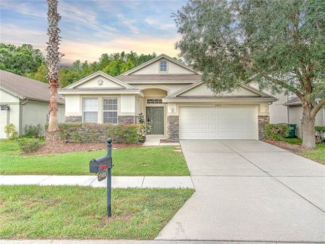 27402 Whispering Birch Way, Wesley Chapel, FL 33544 (MLS #T3244239) :: Griffin Group