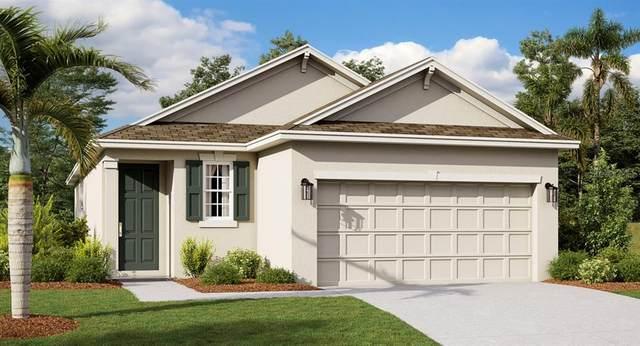 2813 Black Birch Drive, Ocoee, FL 34761 (MLS #T3244241) :: Team Bohannon Keller Williams, Tampa Properties