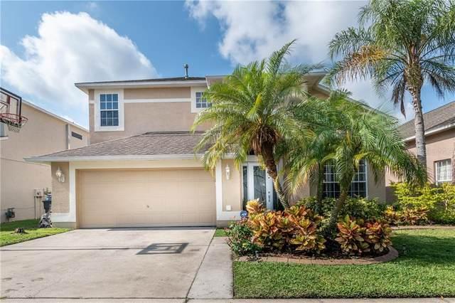 7710 Cedarhurst Lane, Tampa, FL 33625 (MLS #T3244286) :: Cartwright Realty