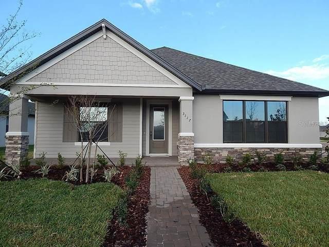 12832 Rangeland Boulevard, Odessa, FL 33556 (MLS #T3244313) :: Team Bohannon Keller Williams, Tampa Properties