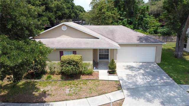 8520 Queen Brooks Court, Temple Terrace, FL 33637 (MLS #T3244352) :: The Paxton Group