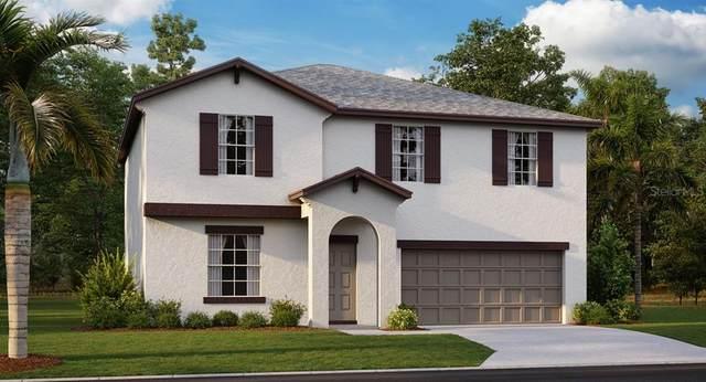 13260 Jeter Creek Drive, Riverview, FL 33579 (MLS #T3244360) :: EXIT King Realty