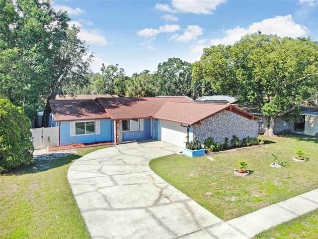3620 Coppertree Circle, Brandon, FL 33511 (MLS #T3244363) :: Bridge Realty Group