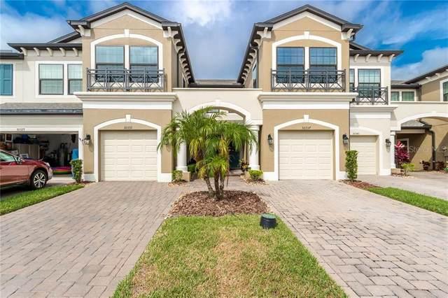 30333 Southwell Lane, Wesley Chapel, FL 33543 (MLS #T3244391) :: Baird Realty Group