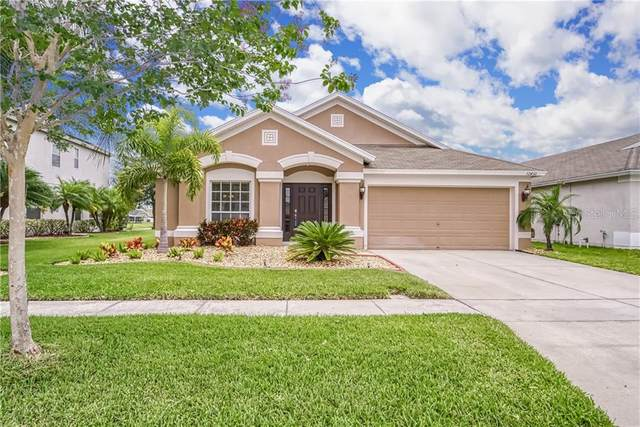12410 Cedarfield Drive, Riverview, FL 33579 (MLS #T3244392) :: Mark and Joni Coulter | Better Homes and Gardens