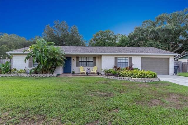 3407 Blowing Oak, Valrico, FL 33596 (MLS #T3244400) :: Medway Realty